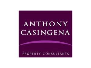Anthony Casingena Logo Design