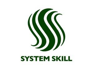 System Skill Logo Design