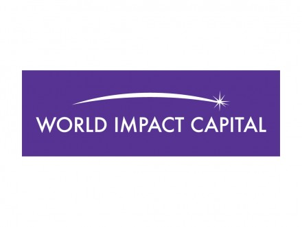 World Impact Capital Logo Design